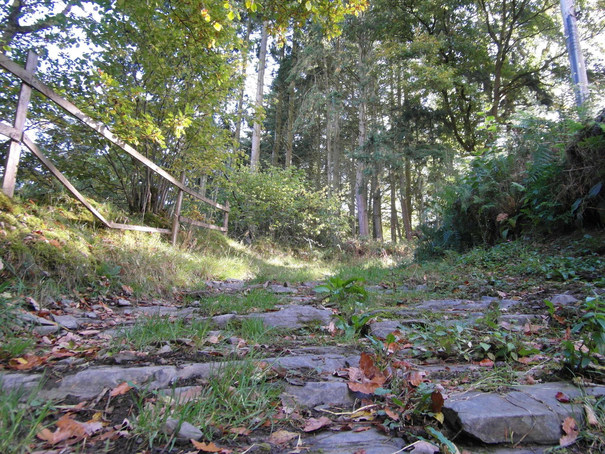Uphill Backyard Landscaping - 28 Images - Shady Woodland Hillside Steps Simple Slab Steps ...