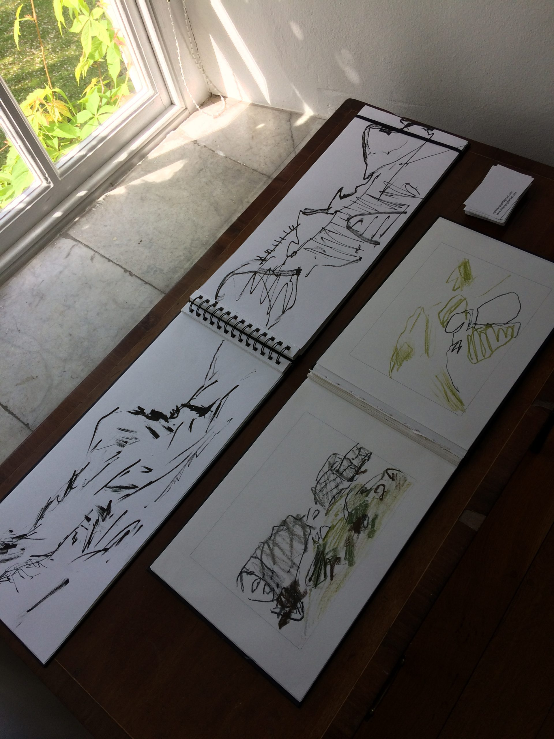 Helen Pugh - Oriel Brondanw sketchbook